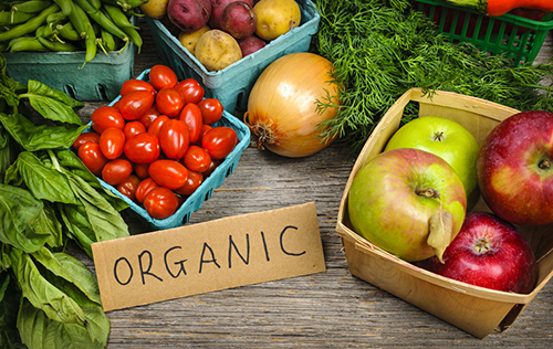 organic-500