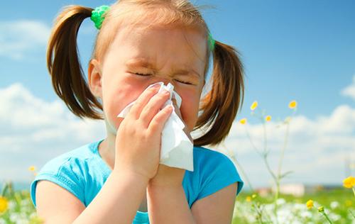 allergy500